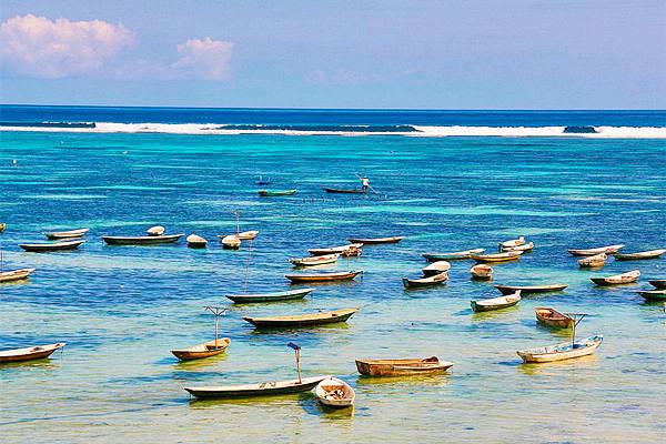 「藍夢島」的圖片搜尋結果